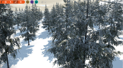 Spruce_with_snow